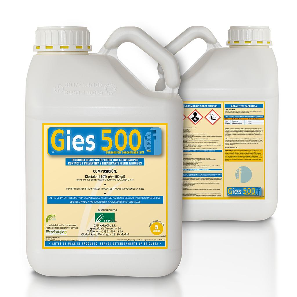 Gies 500
